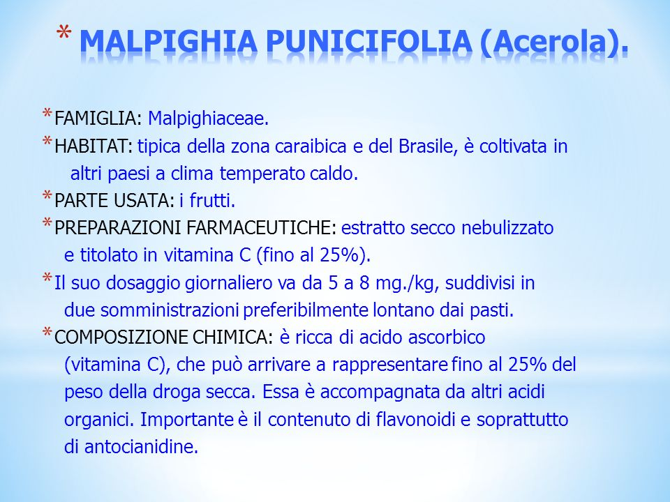 MALPIGHIA PUNICIFOLIA (Acerola).