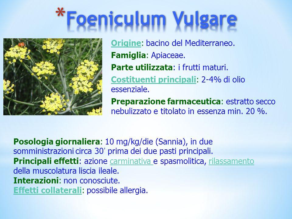 Foeniculum Vulgare Origine: bacino del Mediterraneo.