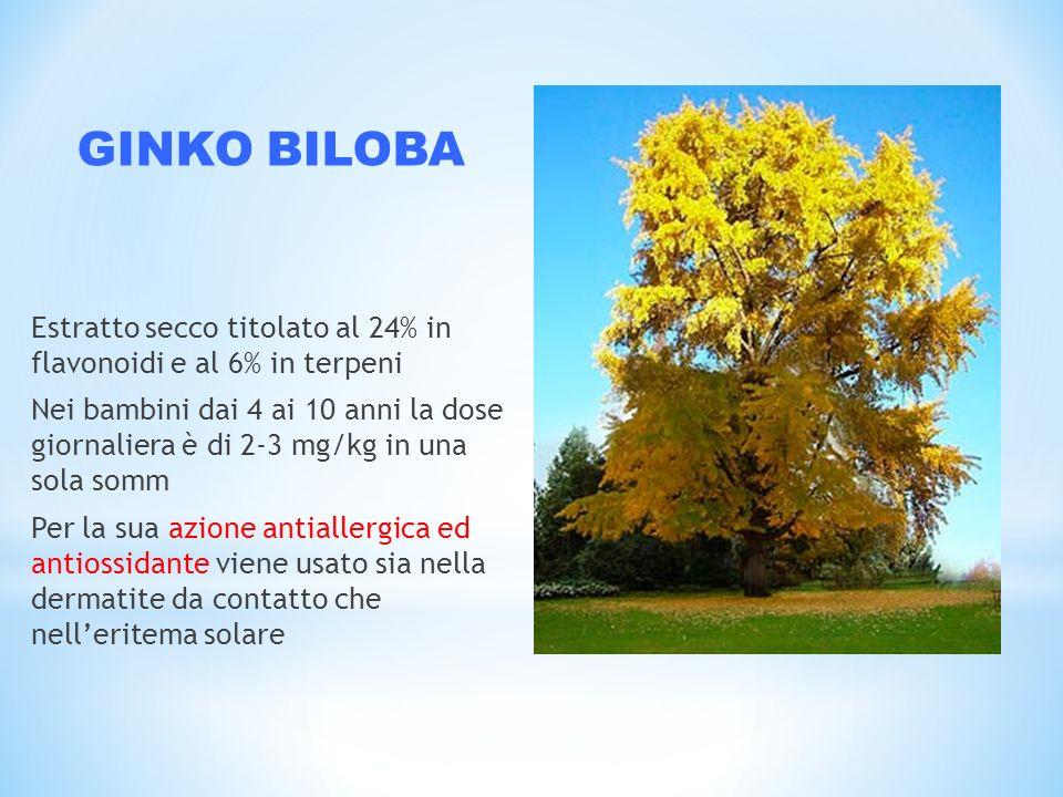 GINKO BILOBA Estratto secco titolato al 24% in flavonoidi e al 6% in terpeni.