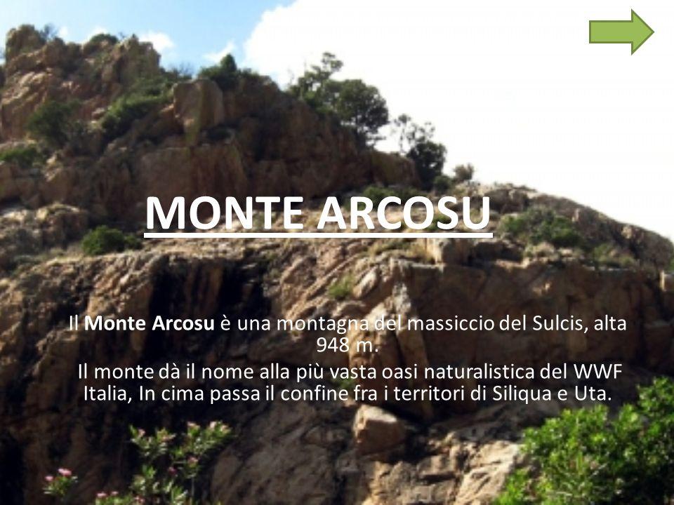 Il Monte Arcosu è una montagna del massiccio del Sulcis, alta 948 m.