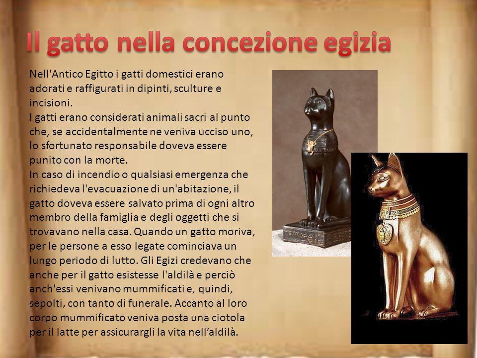 Il gatto nella concezione egizia