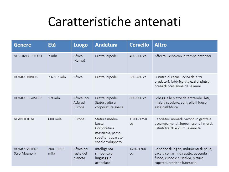 Caratteristiche antenati