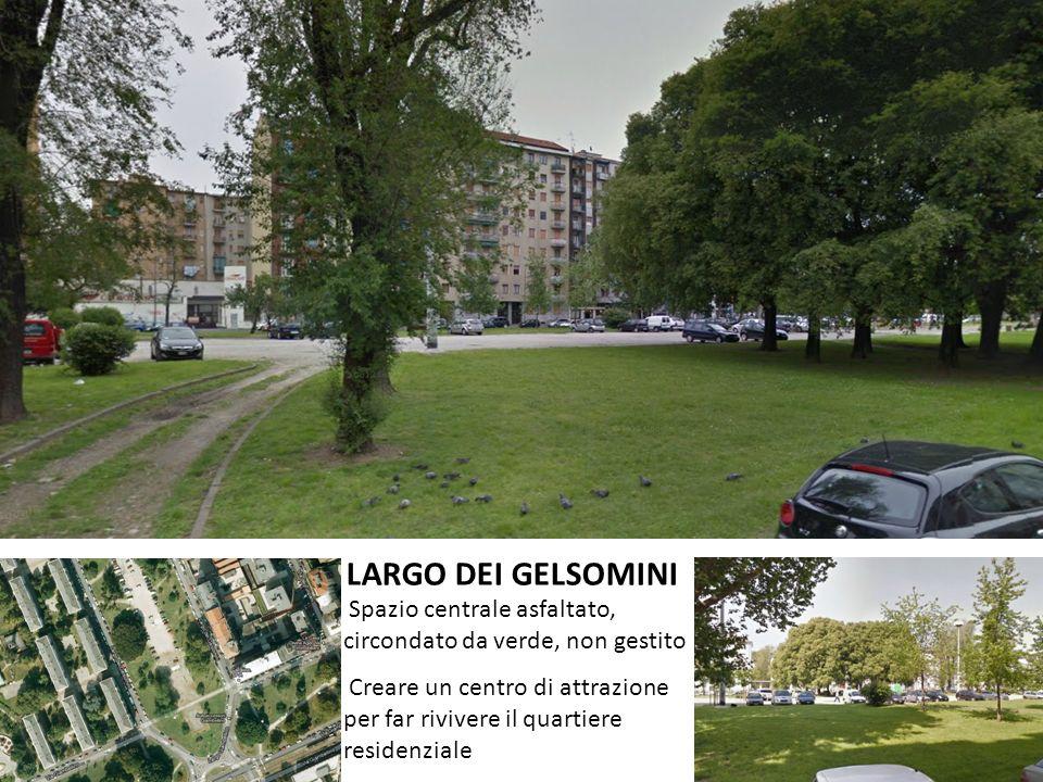 LARGO DEI GELSOMINI Spazio centrale asfaltato, circondato da verde, non gestito.