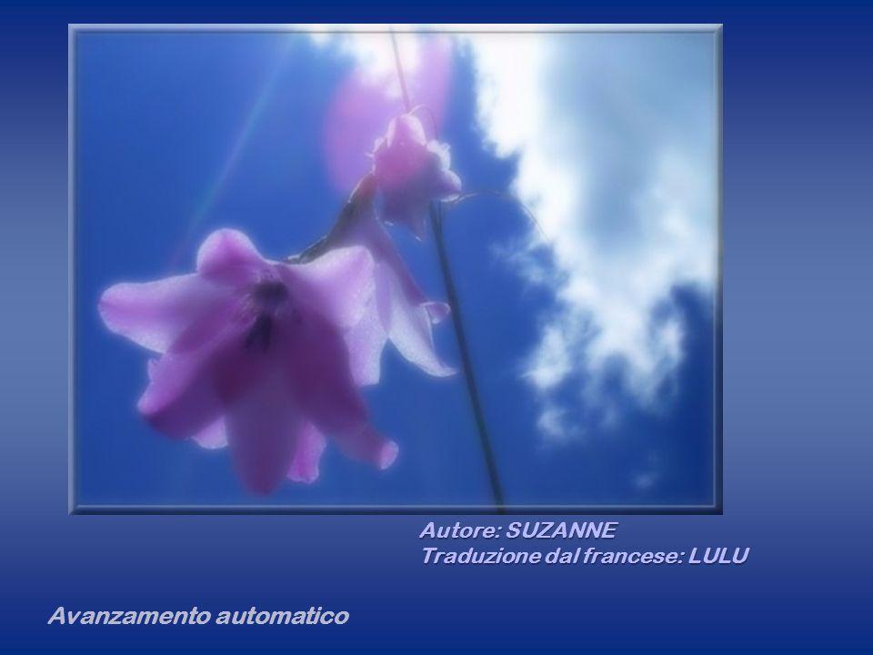 La vita è un fiore Avanzamento automatico Autore: SUZANNE