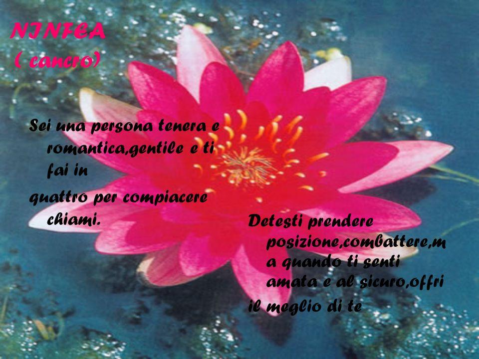 NINFEA ( cancro) Sei una persona tenera e romantica,gentile e ti fai in. quattro per compiacere chiami.