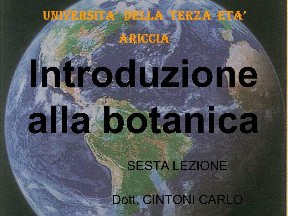 Introduzione alla botanica