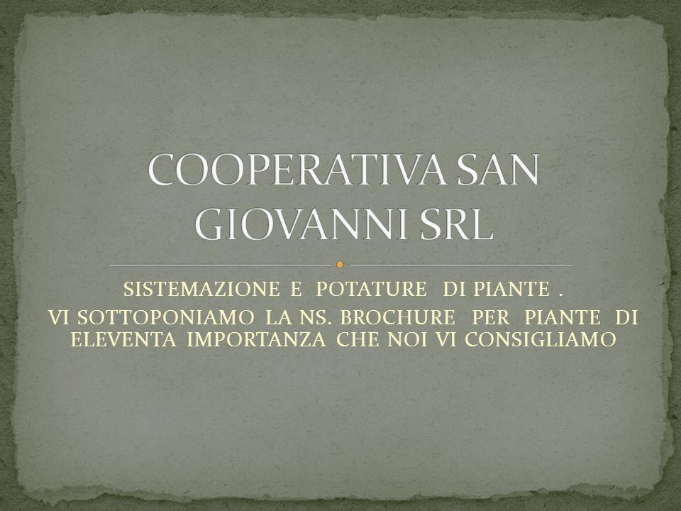 COOPERATIVA SAN GIOVANNI SRL