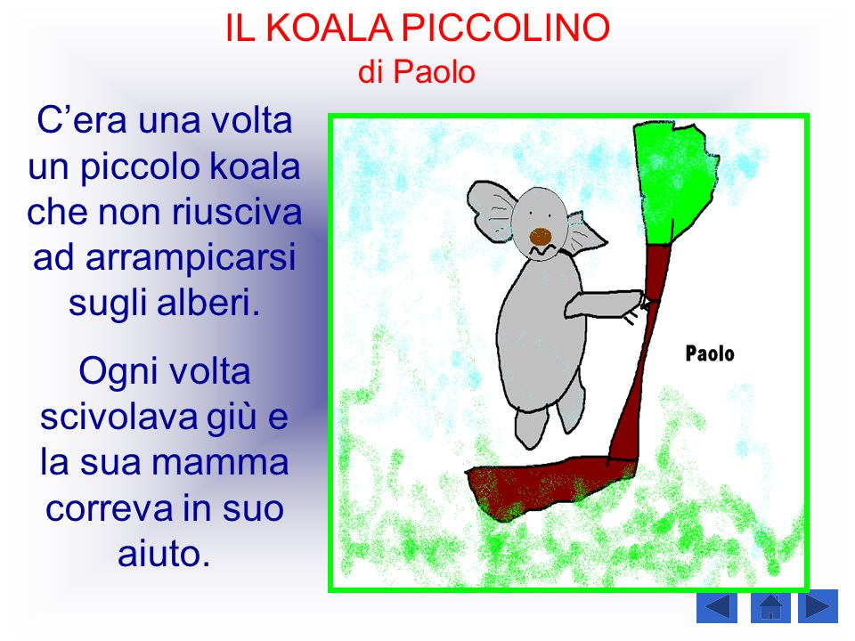 IL KOALA PICCOLINO di Paolo