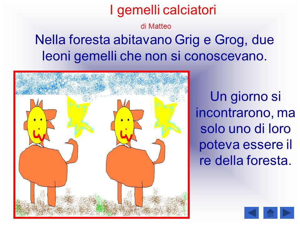 I gemelli calciatori di Matteo. Nella foresta abitavano Grig e Grog, due leoni gemelli che non si conoscevano.