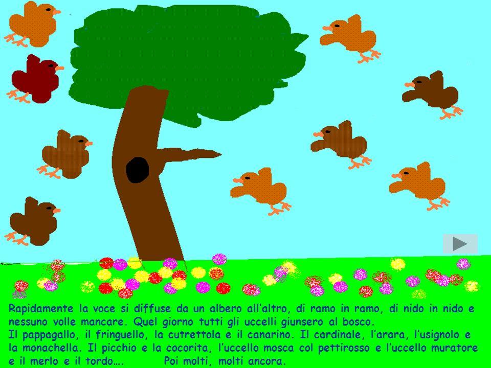 Rapidamente la voce si diffuse da un albero all'altro, di ramo in ramo, di nido in nido e nessuno volle mancare.