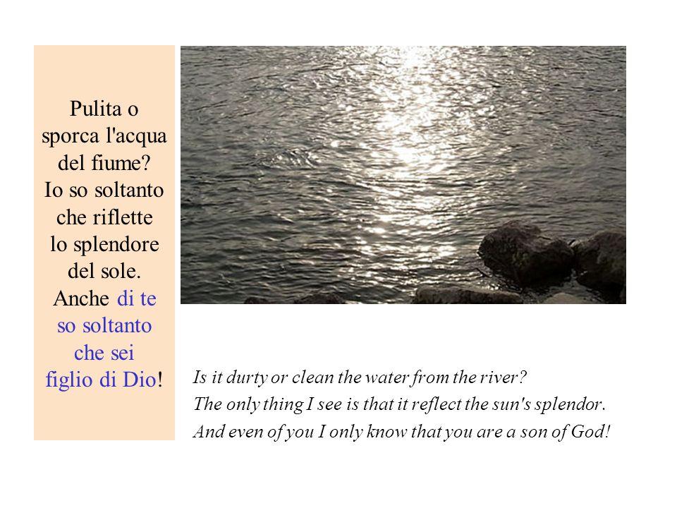 Pulita o sporca l acqua del fiume