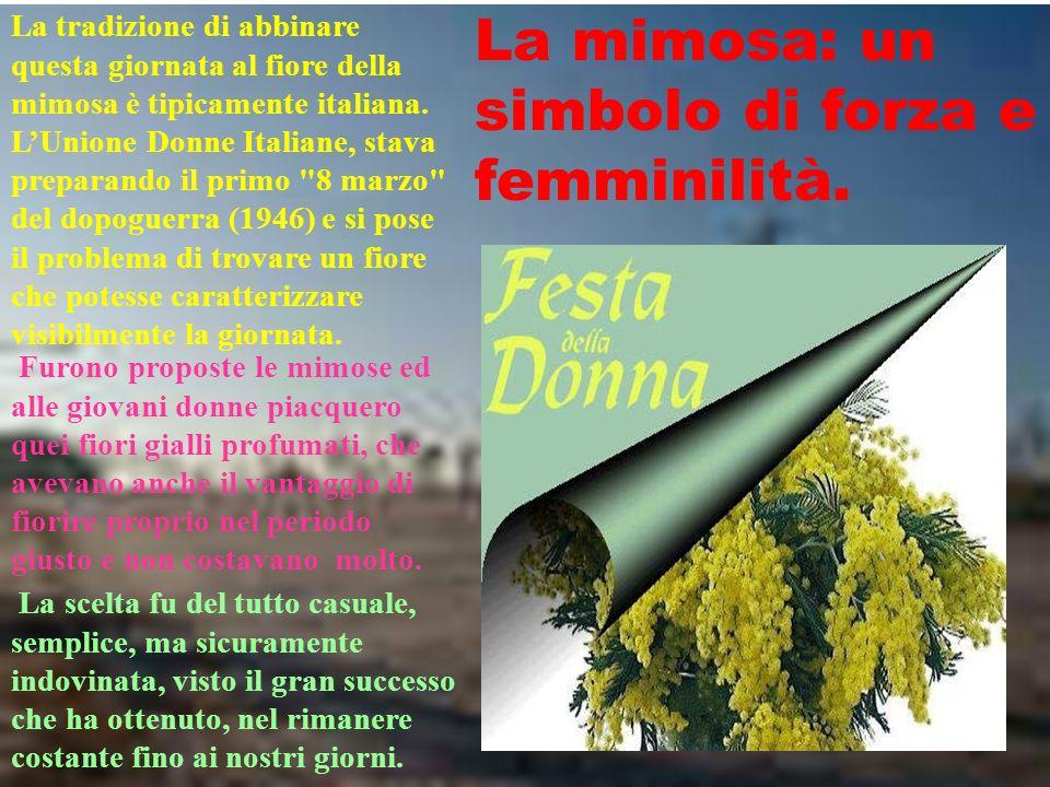 La mimosa: un simbolo di forza e femminilità.