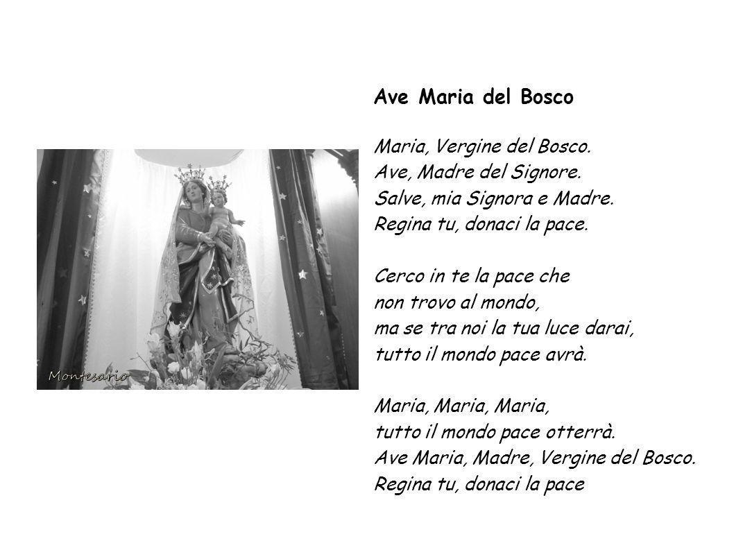Ave Maria del Bosco Maria, Vergine del Bosco. Ave, Madre del Signore.