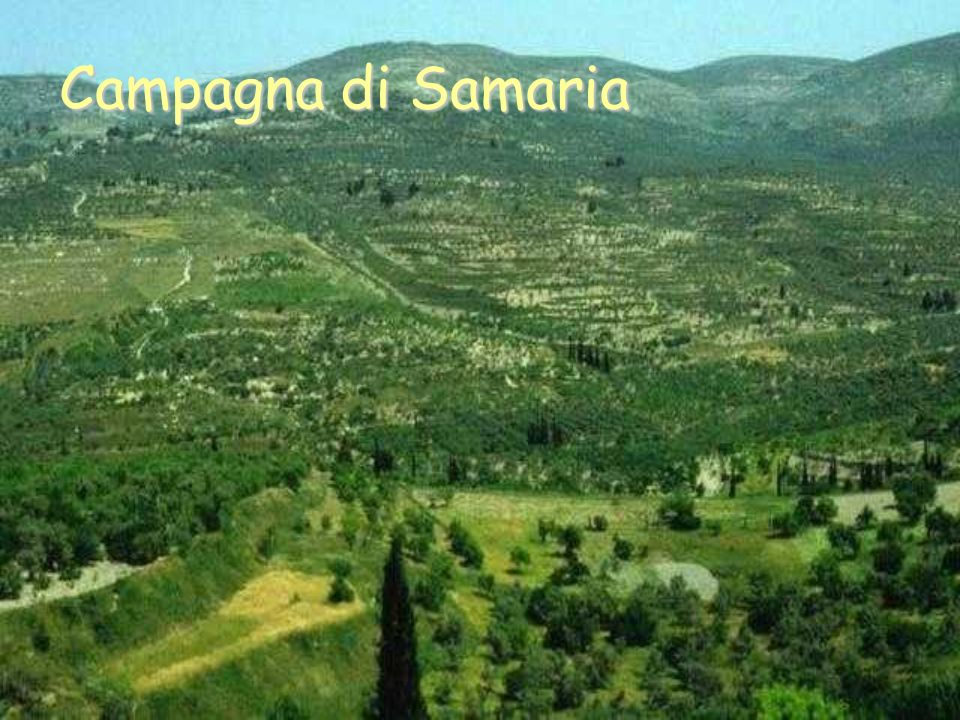 Campagna di Samaria