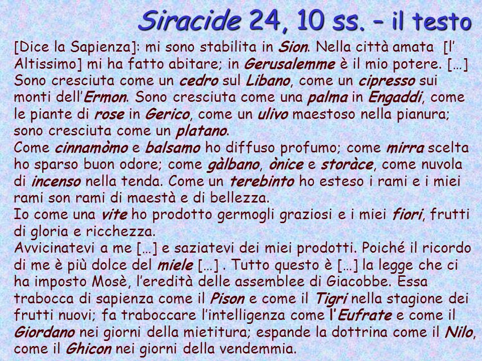 Siracide 24, 10 ss. – il testo