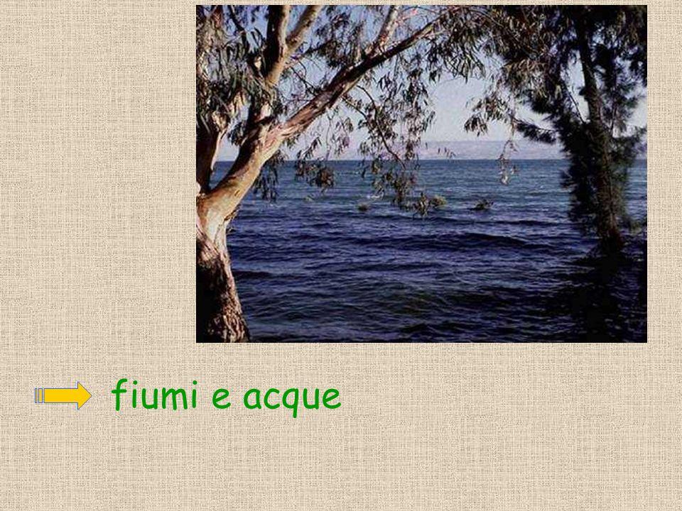 fiumi e acque
