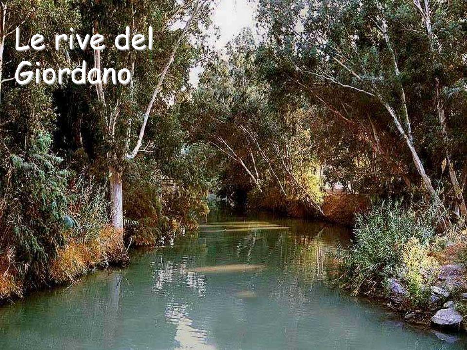 Le rive del Giordano
