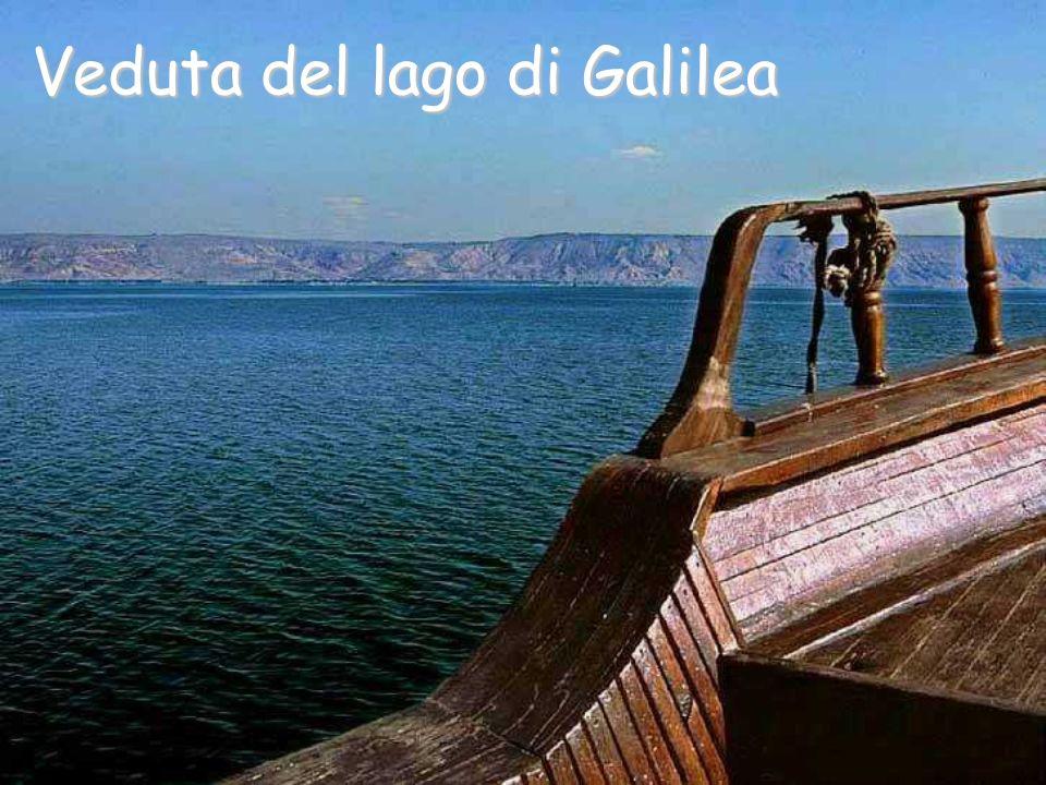 Veduta del lago di Galilea