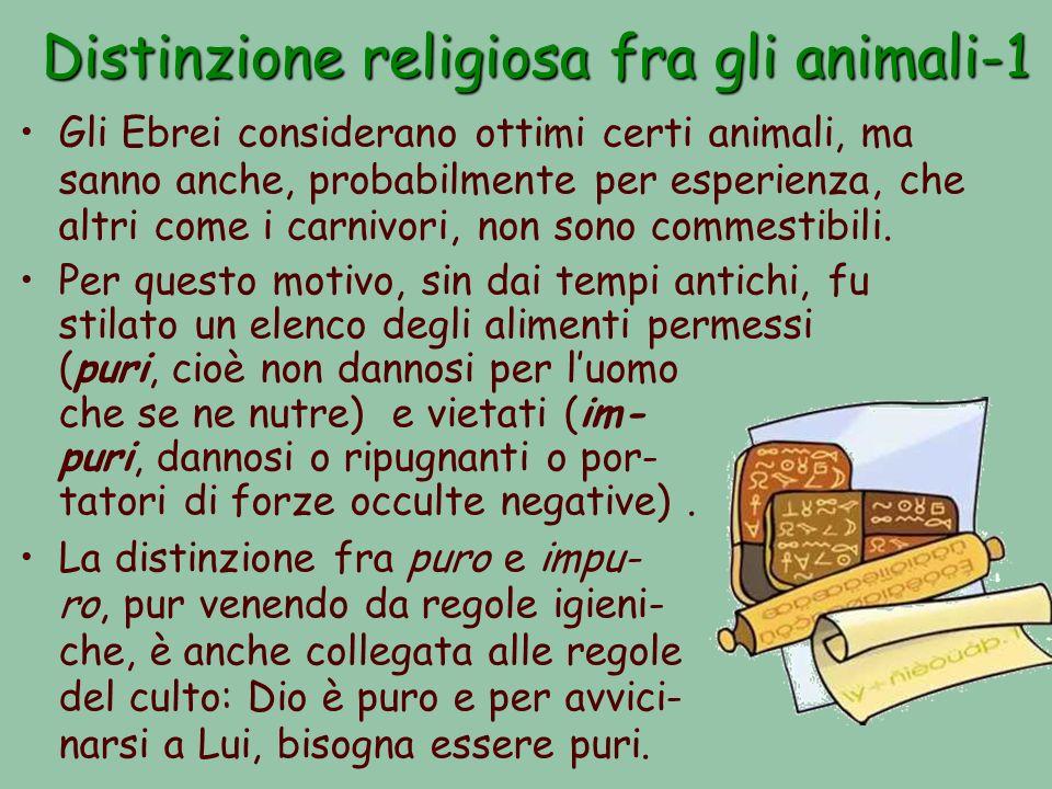 Distinzione religiosa fra gli animali-1