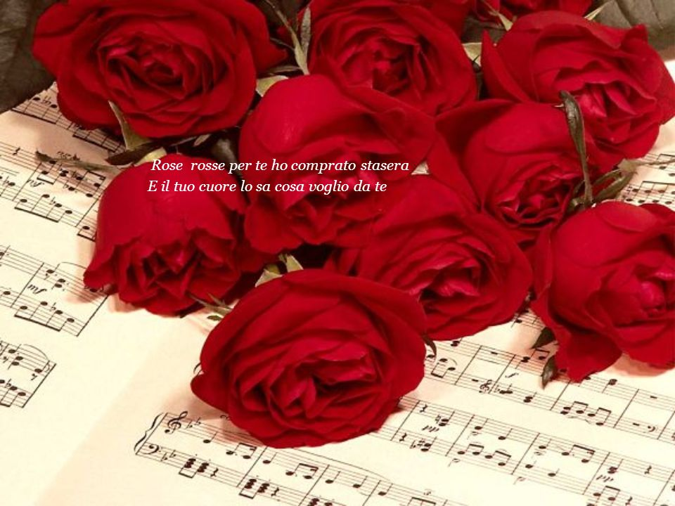 Rose rosse per te ho comprato stasera