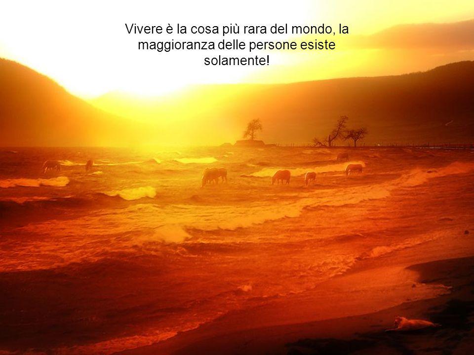 Vivere è la cosa più rara del mondo, la maggioranza delle persone esiste solamente!
