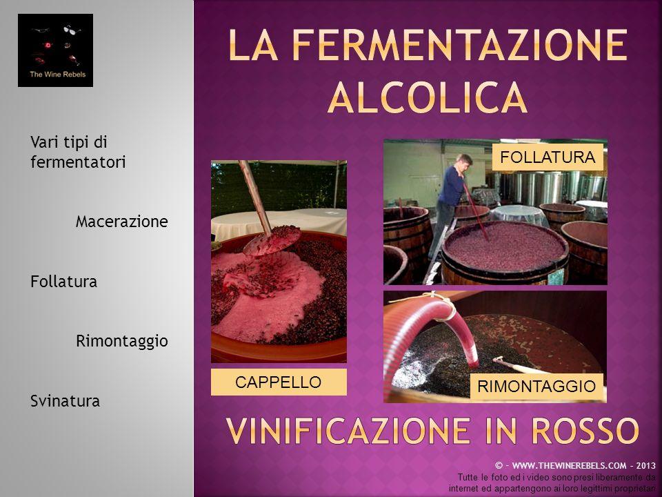 La fermentazione alcolica