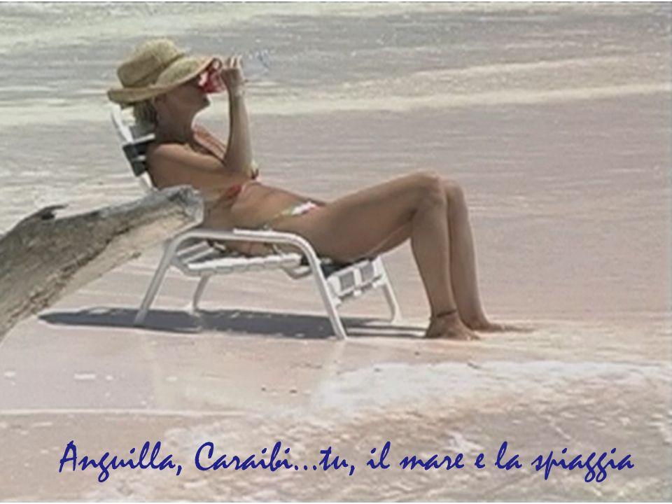 Anguilla, Caraibi…tu, il mare e la spiaggia