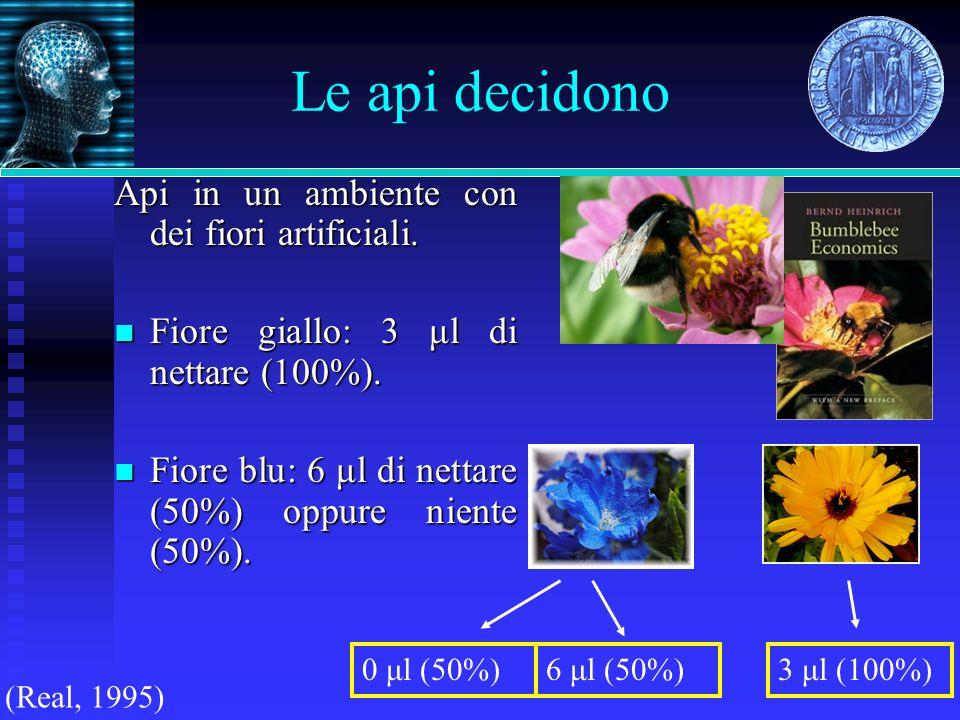 Le api decidono Api in un ambiente con dei fiori artificiali.