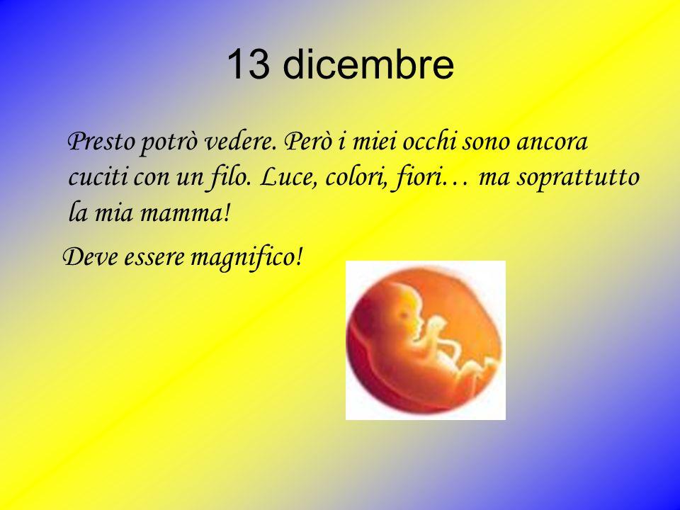 13 dicembre Presto potrò vedere. Però i miei occhi sono ancora cuciti con un filo. Luce, colori, fiori… ma soprattutto la mia mamma!