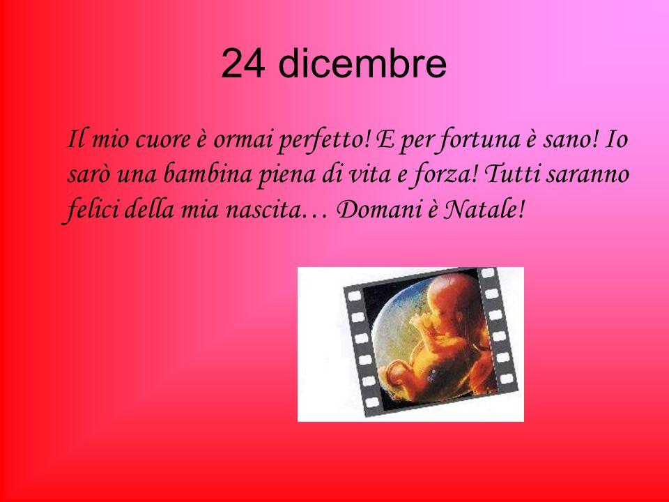 24 dicembre