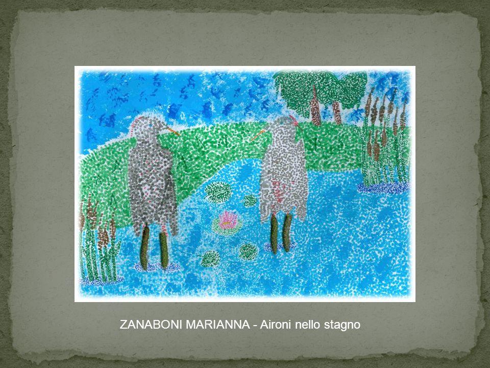 ZANABONI MARIANNA - Aironi nello stagno