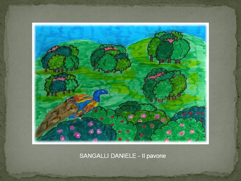 SANGALLI DANIELE - Il pavone