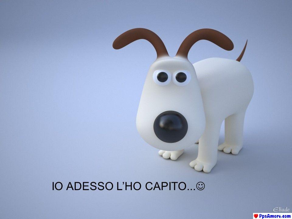 IO ADESSO L'HO CAPITO...
