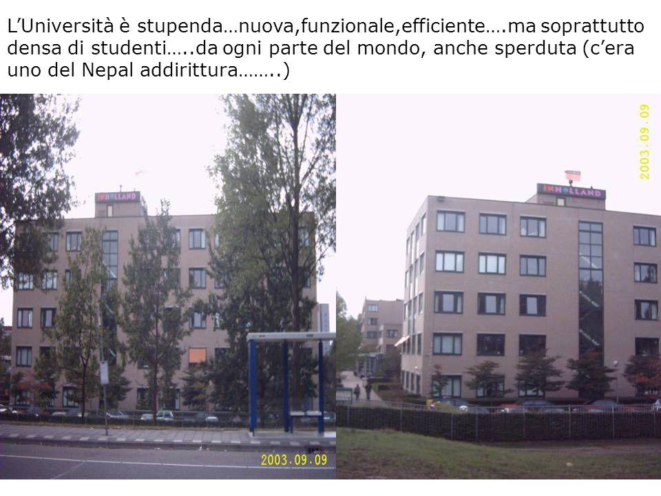 L'Università è stupenda…nuova,funzionale,efficiente….ma soprattutto