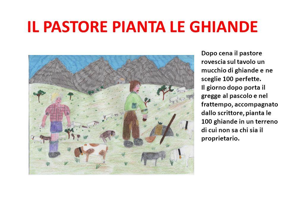 IL PASTORE PIANTA LE GHIANDE