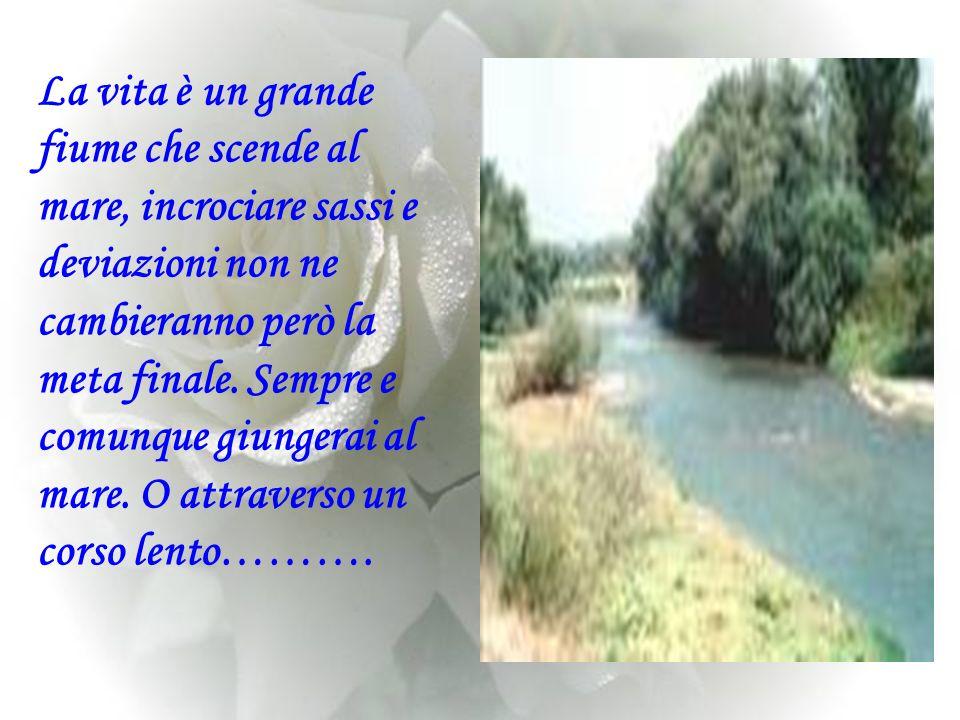 La vita è un grande fiume che scende al mare, incrociare sassi e deviazioni non ne cambieranno però la meta finale.