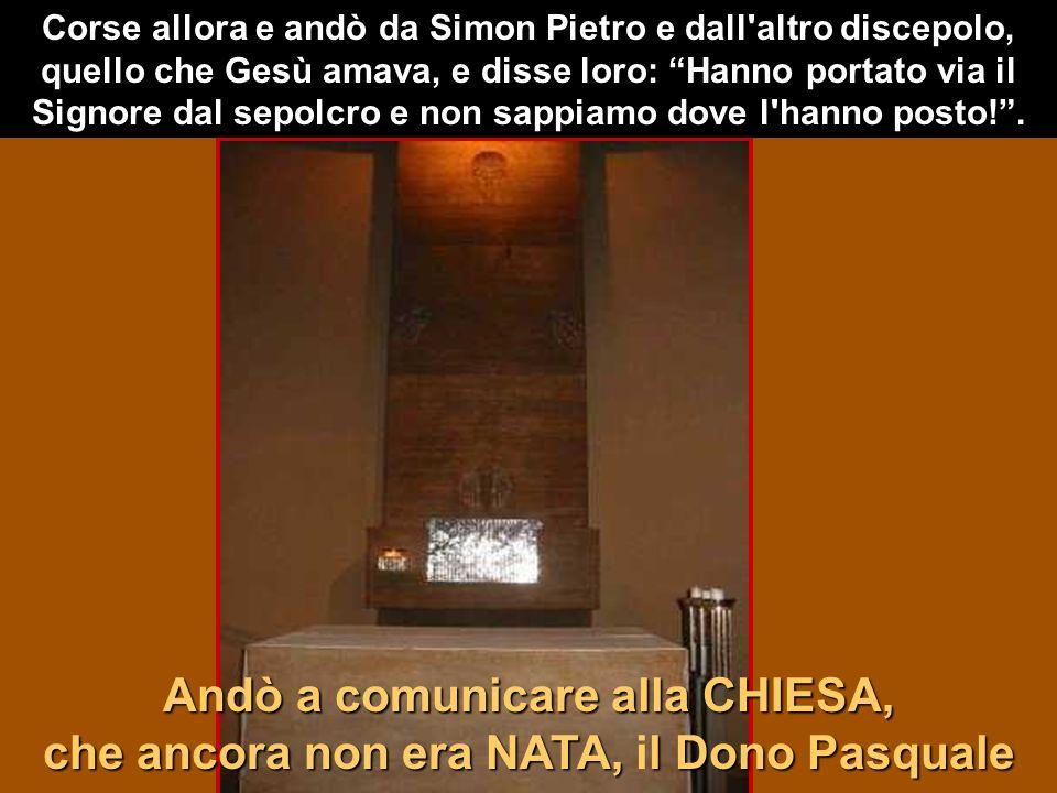 Corse allora e andò da Simon Pietro e dall altro discepolo, quello che Gesù amava, e disse loro: Hanno portato via il Signore dal sepolcro e non sappiamo dove l hanno posto! .