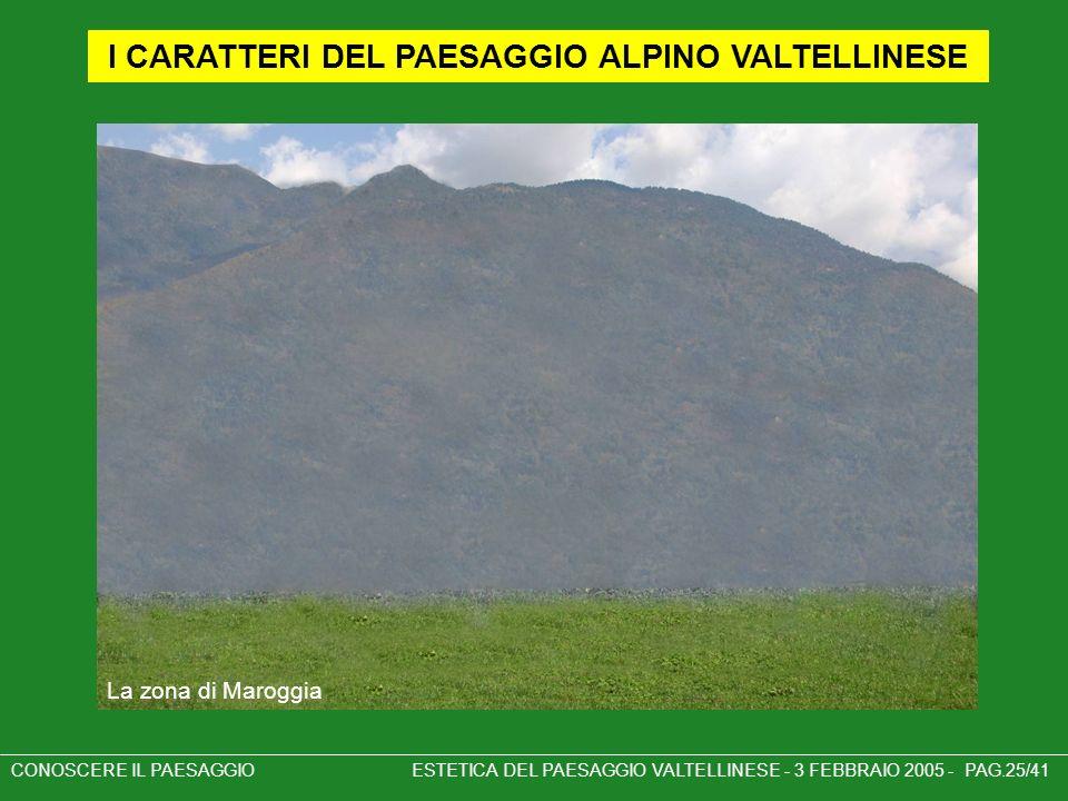 I CARATTERI DEL PAESAGGIO ALPINO VALTELLINESE