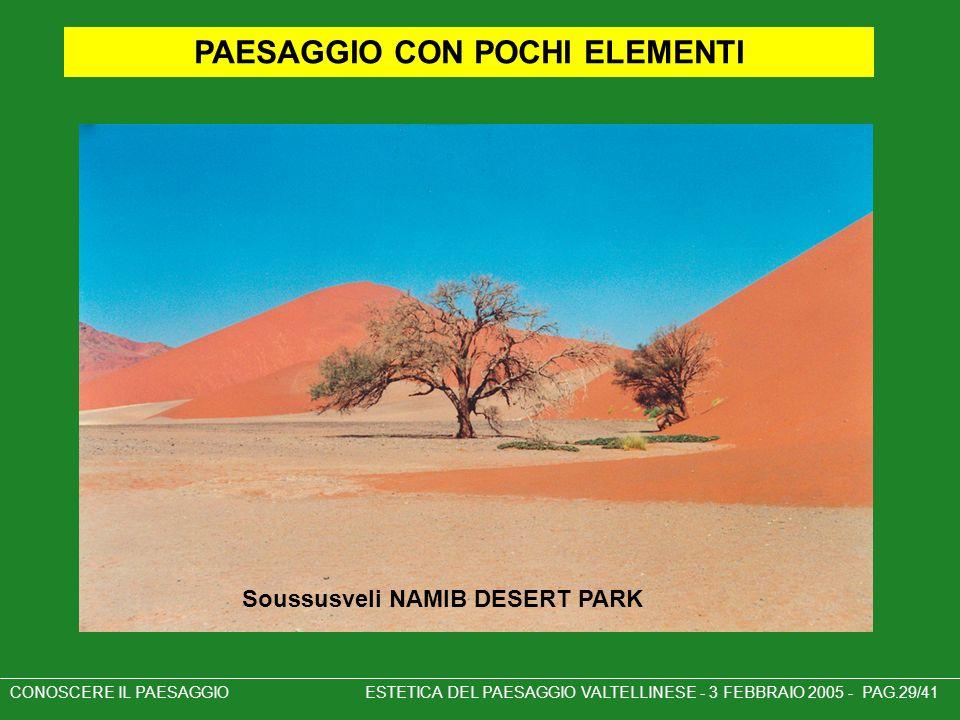 PAESAGGIO CON POCHI ELEMENTI Soussusveli NAMIB DESERT PARK