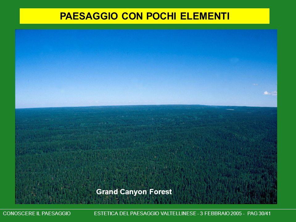 PAESAGGIO CON POCHI ELEMENTI