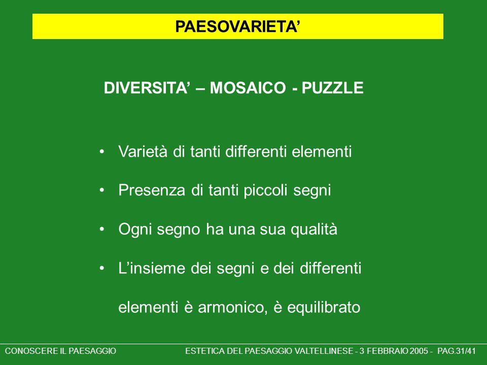 DIVERSITA' – MOSAICO - PUZZLE