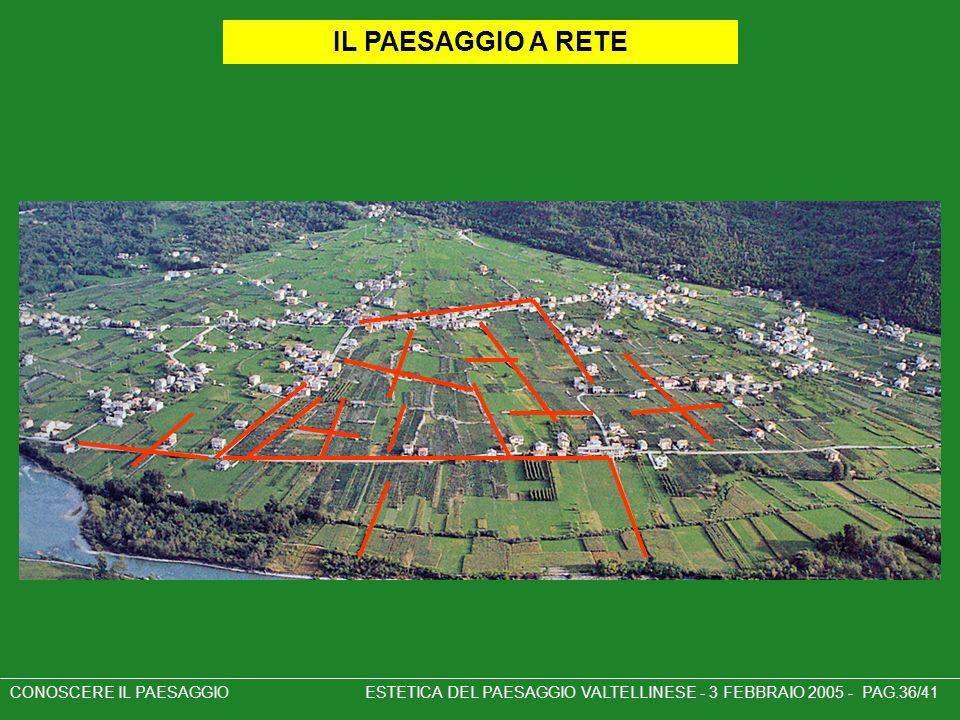 IL PAESAGGIO A RETE CONOSCERE IL PAESAGGIO ESTETICA DEL PAESAGGIO VALTELLINESE - 3 FEBBRAIO 2005 - PAG.36/41.