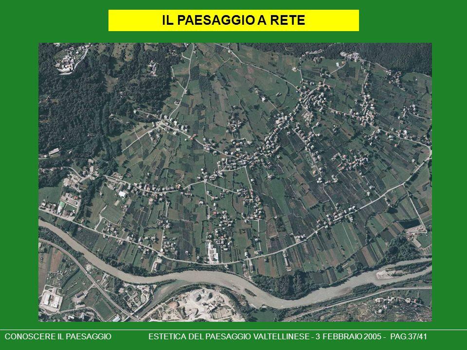 IL PAESAGGIO A RETE CONOSCERE IL PAESAGGIO ESTETICA DEL PAESAGGIO VALTELLINESE - 3 FEBBRAIO 2005 - PAG.37/41.