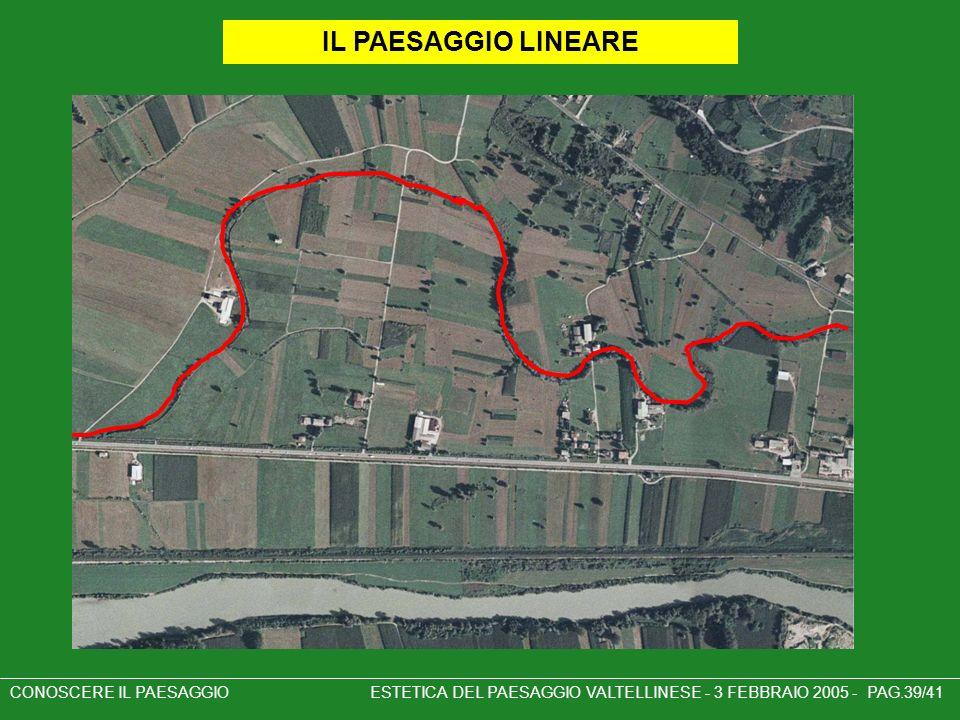 IL PAESAGGIO LINEARE CONOSCERE IL PAESAGGIO ESTETICA DEL PAESAGGIO VALTELLINESE - 3 FEBBRAIO 2005 - PAG.39/41.