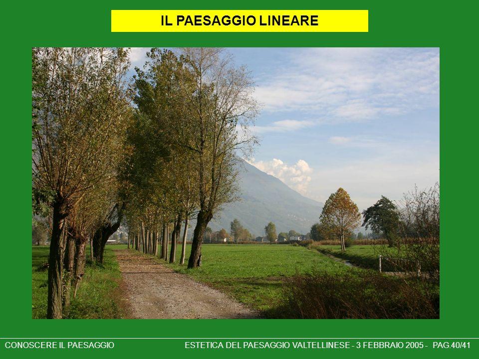IL PAESAGGIO LINEARE CONOSCERE IL PAESAGGIO ESTETICA DEL PAESAGGIO VALTELLINESE - 3 FEBBRAIO 2005 - PAG.40/41.