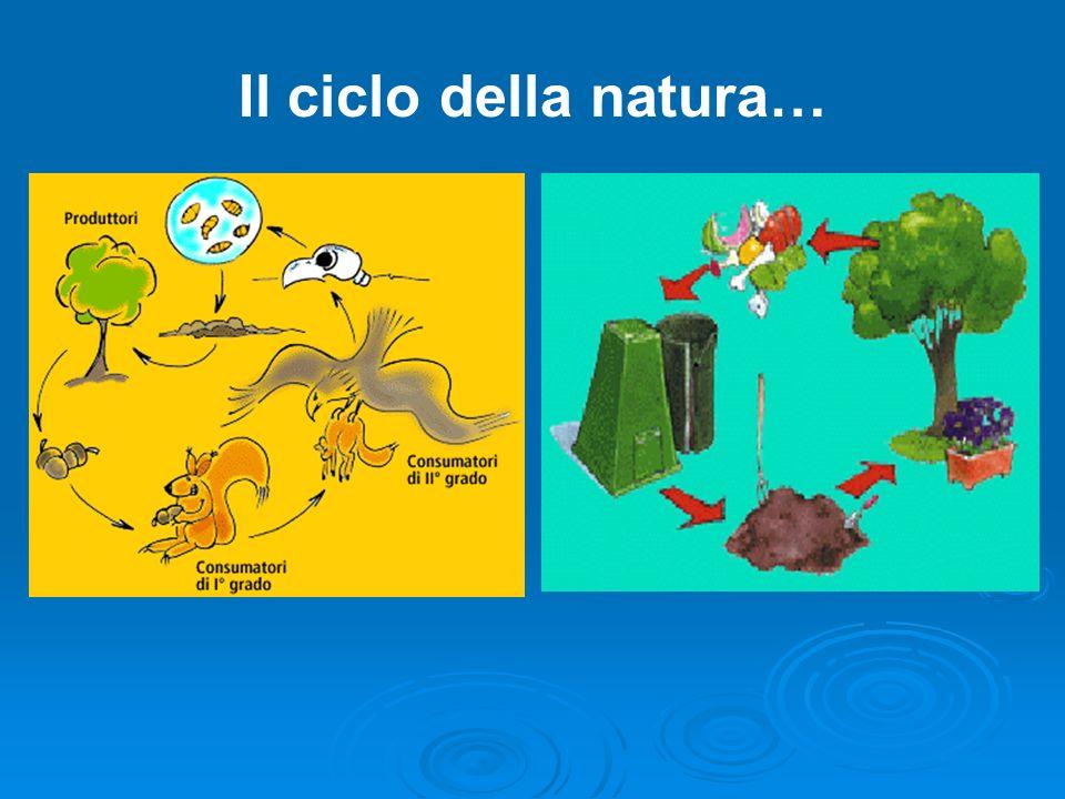 Il ciclo della natura…