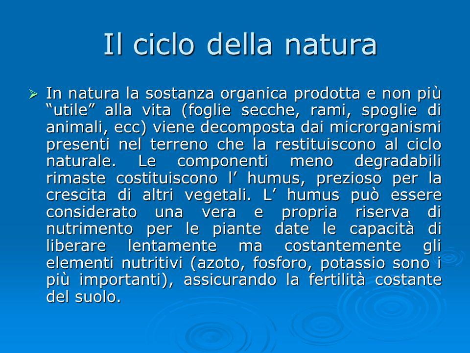 Il ciclo della natura