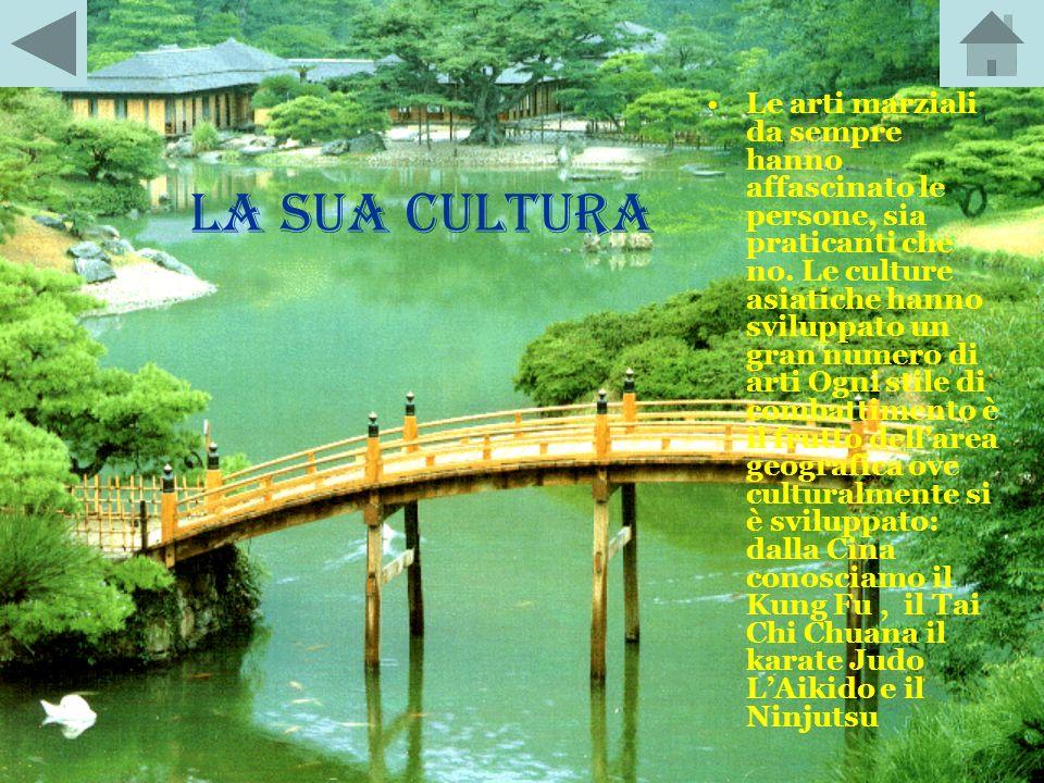 Le arti marziali da sempre hanno affascinato le persone, sia praticanti che no. Le culture asiatiche hanno sviluppato un gran numero di arti Ogni stile di combattimento è il frutto dell'area geografica ove culturalmente si è sviluppato: dalla Cina conosciamo il Kung Fu , il Tai Chi Chuana il karate Judo L'Aikido e il Ninjutsu