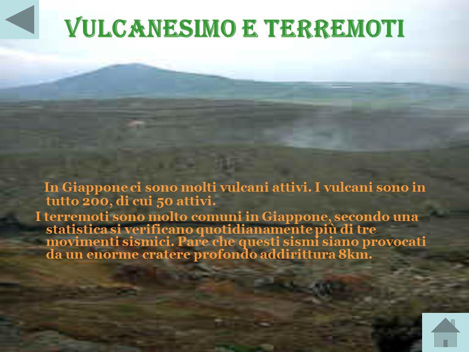 Vulcanesimo e terremoti