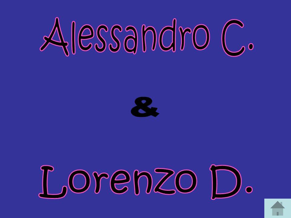 Alessandro C. & Lorenzo D.